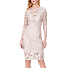 Buy Damsel in a Dress Eira Animal Lace Dress, Champagne Online at johnlewis.com