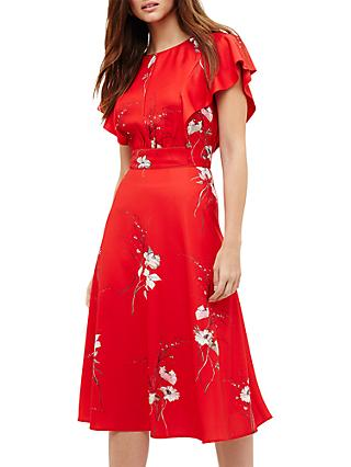 Phase Eight Beatrix Floral Printed Dress, Cream/Red