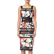 Buy Adrianna Papell Striped Botanica Dress, Black/Multi Online at johnlewis.com