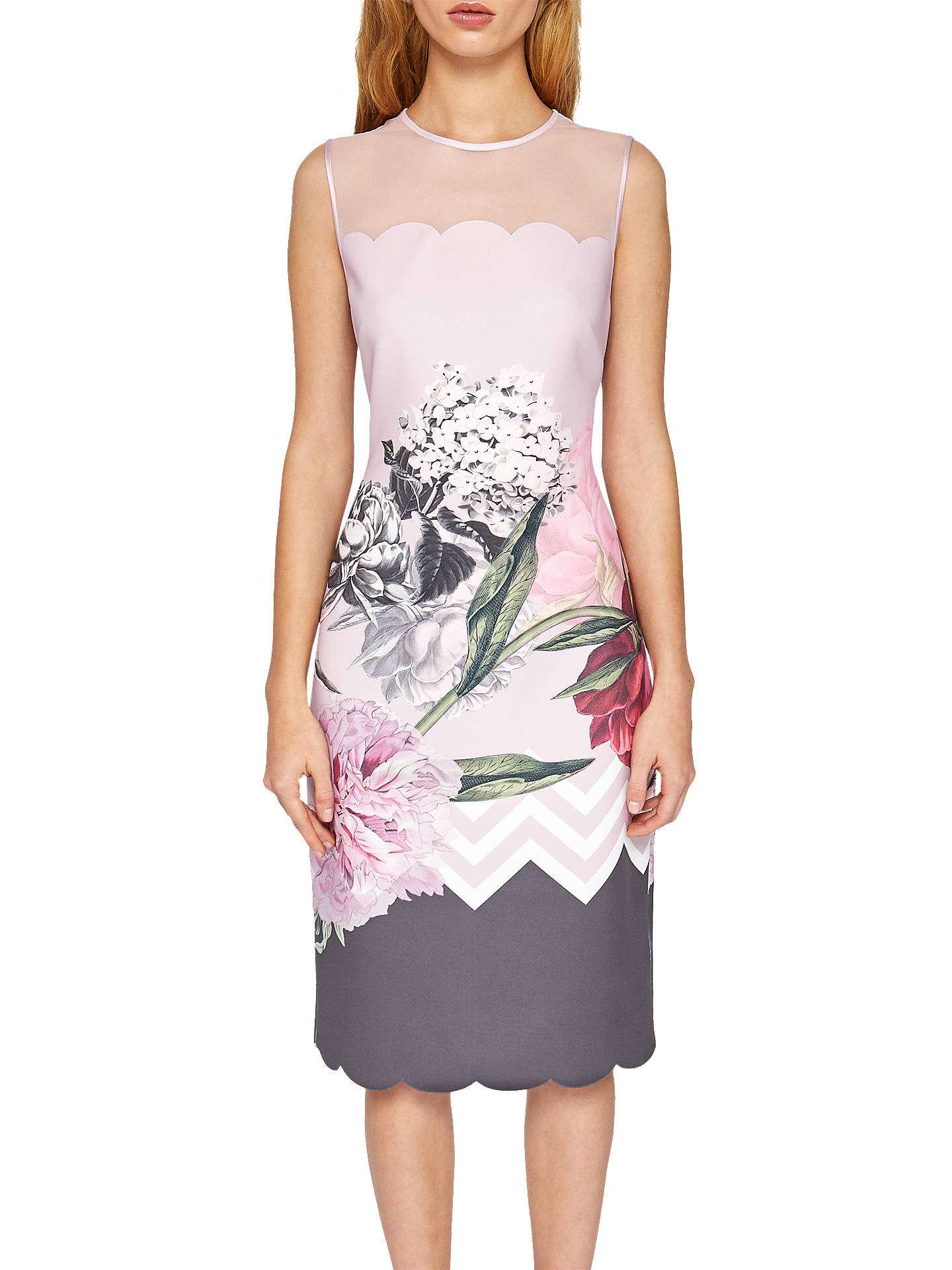 7b88fb4c58bd Buy Ted Baker Arionah Palace Gardens Scallop Detail Midi Dress