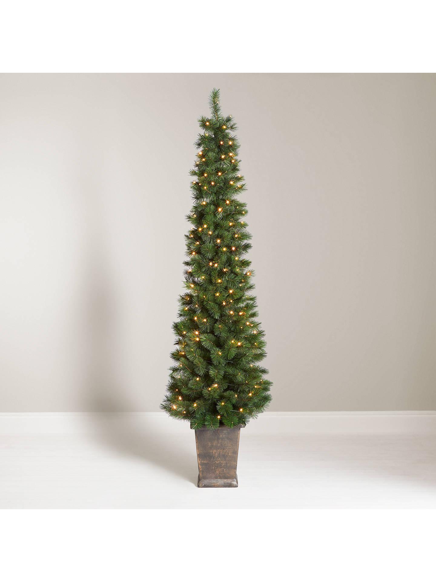 best service 14440 4d52e John Lewis & Partners Pencil Pine Potted Pre-lit Christmas Tree, 5ft