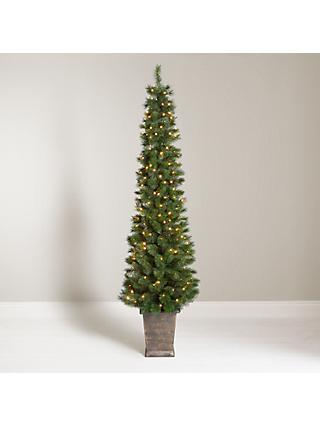 john lewis partners pencil pine potted pre lit christmas tree