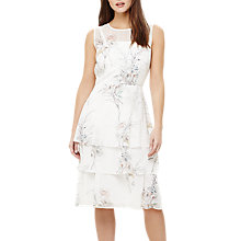 Buy Phase Eight Luca Floral Printed Dress, Ivory Online at johnlewis.com