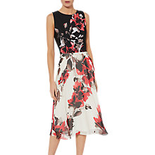 Buy Gina Bacconi Margaery Contrast Floral Dress, Red Online at johnlewis.com