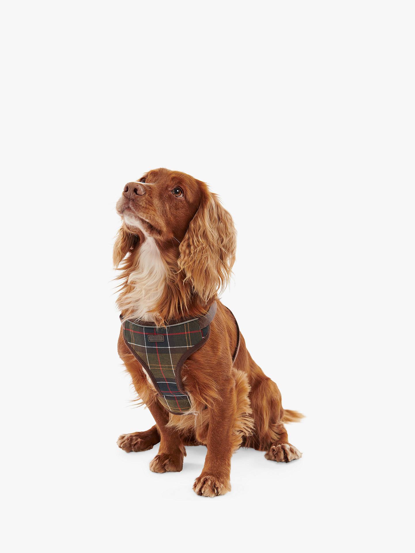 6756588f40 Barbour Classic Tartan Dog Travel Harness at John Lewis   Partners