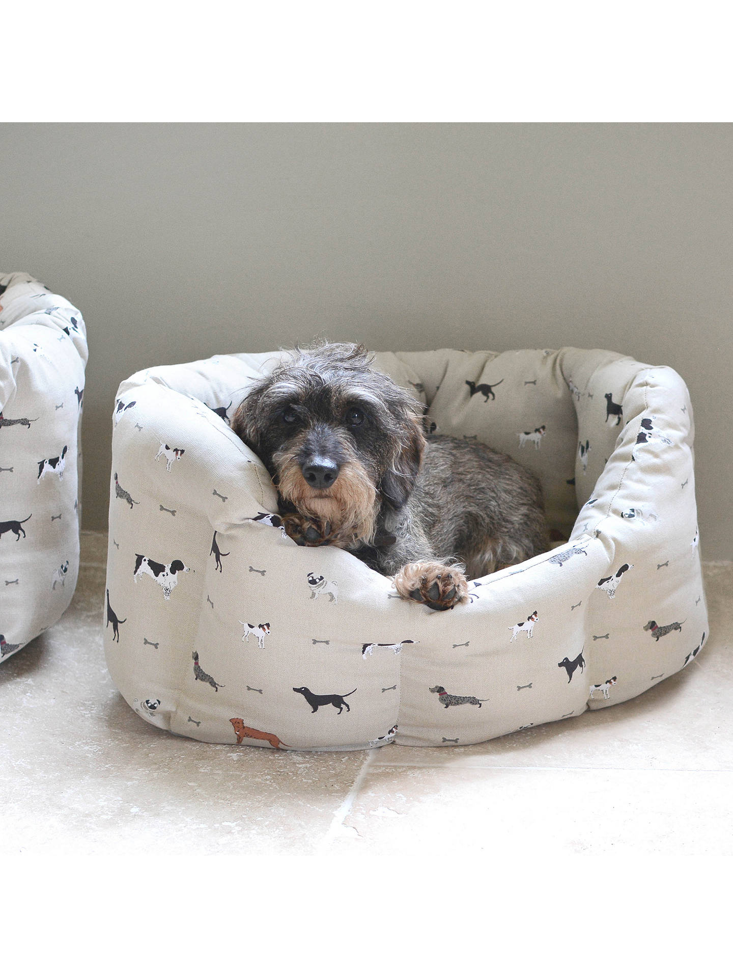 BuySophie Allport Woof Dog Bed, Medium Online at johnlewis.com
