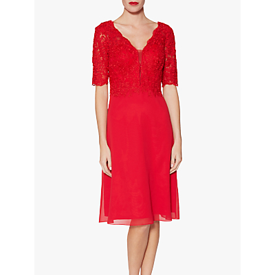 Gina Bacconi Fantasia Lace Bodice Dress