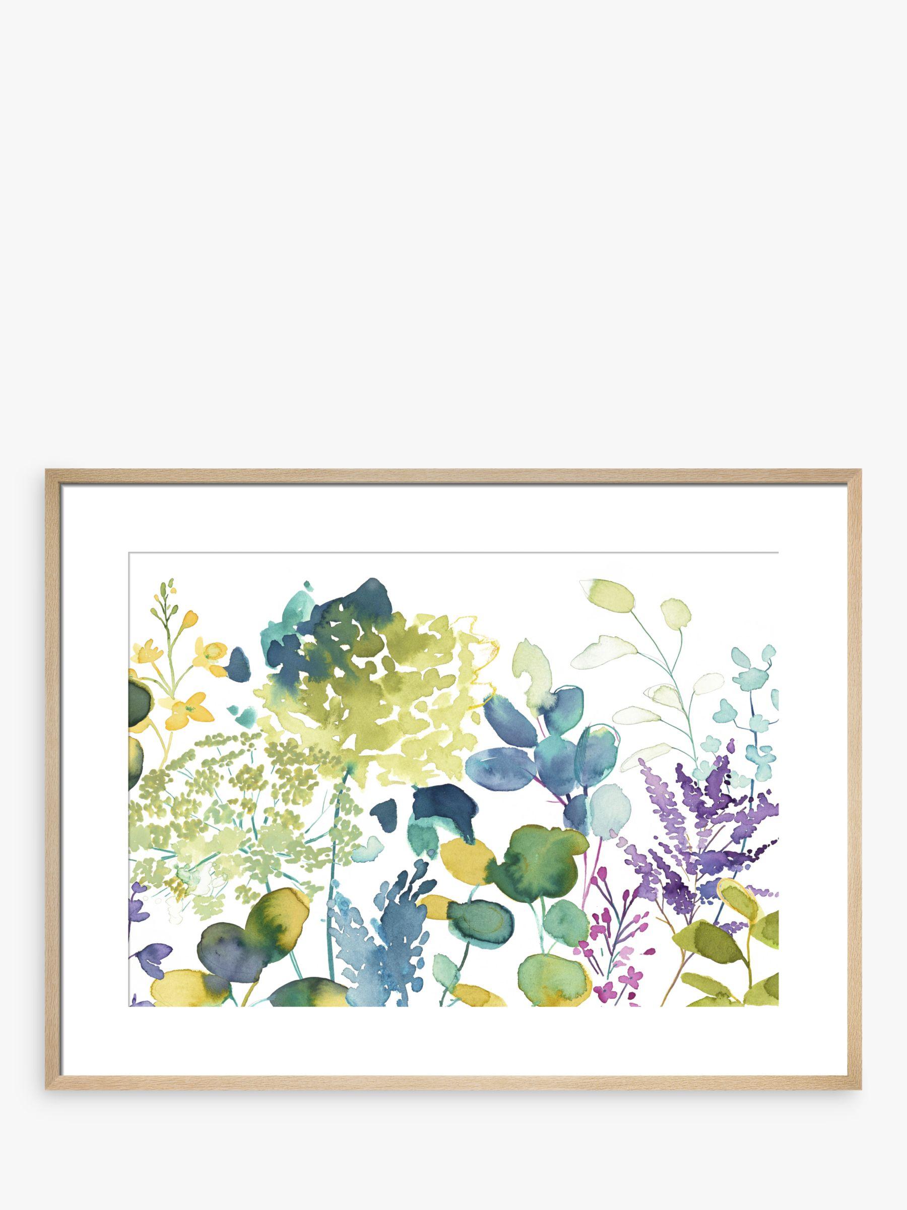 bluebellgray bluebellgrey - Botanical