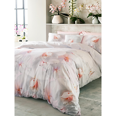 Ted Baker Cotton Candy Bedding
