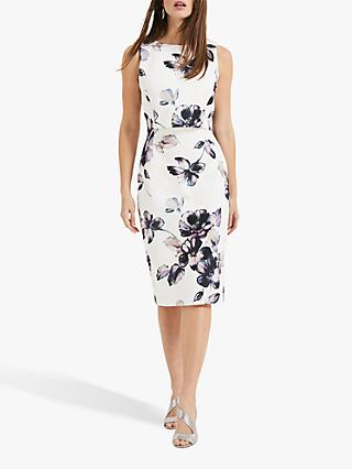 Phase Eight Gracie Floral Dress, Ivory/Multi