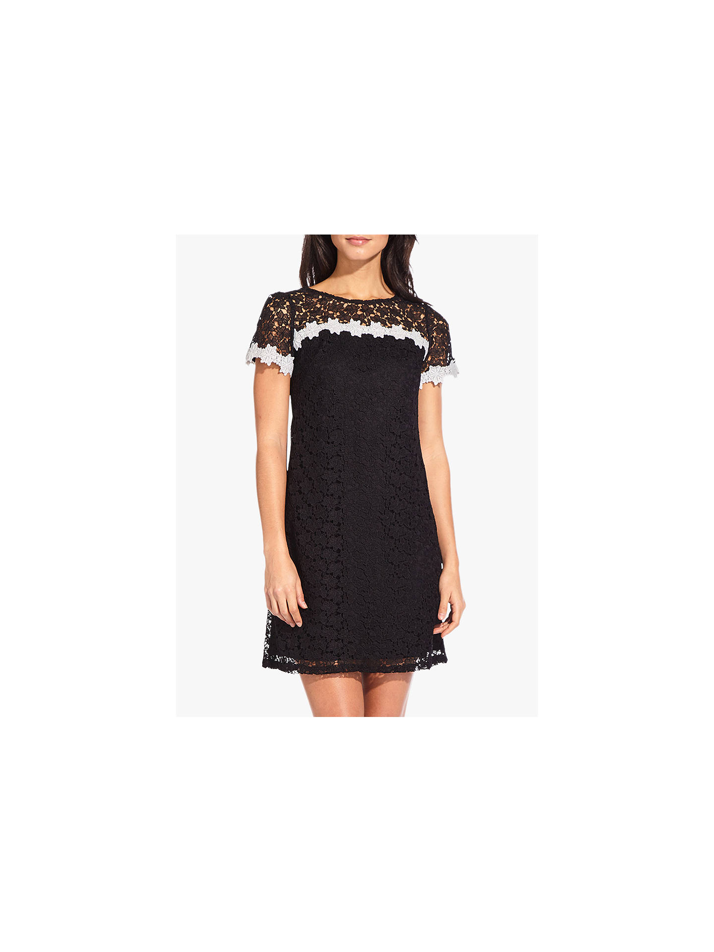 BuyAdrianna Papell Ditsy Floral Lace Dress, Black, 6 Online at johnlewis.com