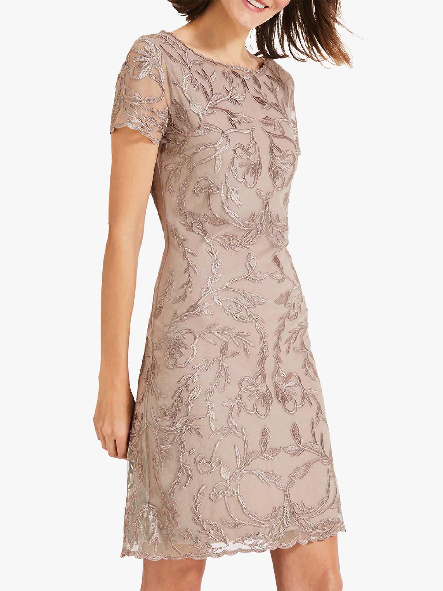 c2faff2e84f08 Phase Eight Alannah Embroidered Mesh Dress, Latte/Oyster
