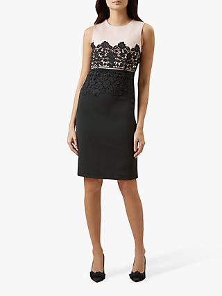Hobbs Seraphina Lace Detail Tailored Dress, Nude/Black