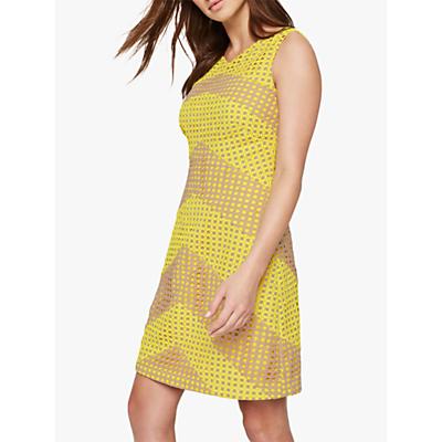 Damsel in a Dress Thekla Stripe Dress, Yellow/Nude