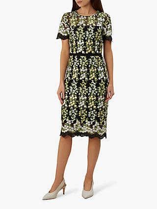 264d68d66d Hobbs Rhoda Lace Dress