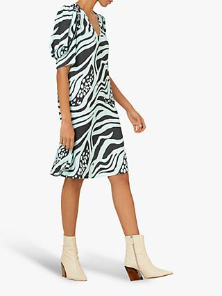 Finery Maia Zebra Print Dress, Mint/Multi