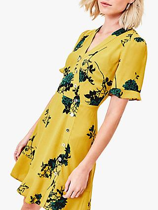 Oasis Spaced Rose Print Dress, Lime Green