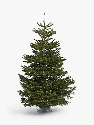 Tinkerbell Christmas Decorations Uk.Christmas Trees Real Artificial Christmas Trees At John