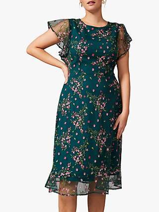Studio 8 Aileen Floral Knee Length Dress, Green/Multi