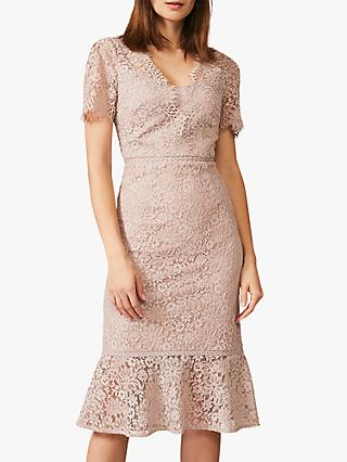 Phase Eight Lorella Floral Lace Dress, Taupe