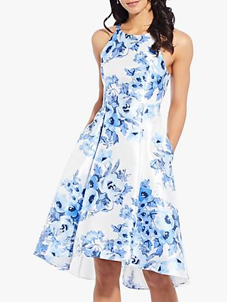 Adrianna Papell Toile Floral Dress, Blue/Multi