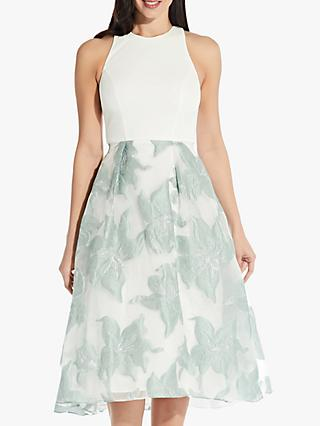 Adrianna Papell Floral Print Flared Combo Dress, Seafoam