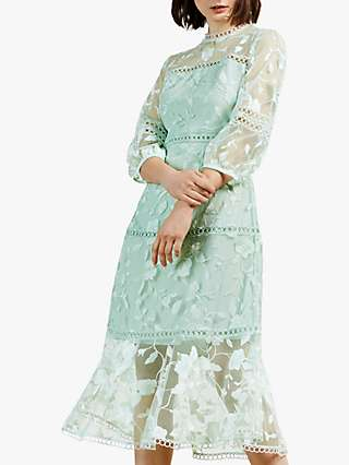 Ted Baker Tabii Floral Embroidered Midi Dress, Green Mint