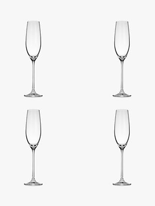 John Lewis & Partners Vino Champagne Flutes, Set of 4, 200ml