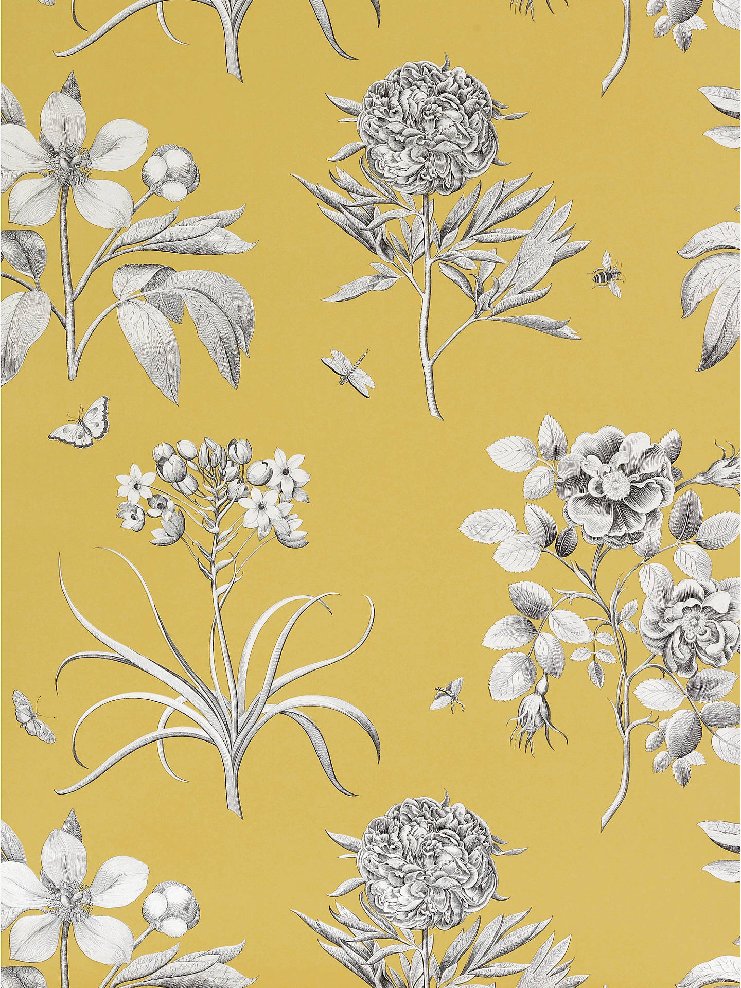Buy Sanderson Wallpaper, Etchings and Roses DPFWER104, Yellow Online at johnlewis.com