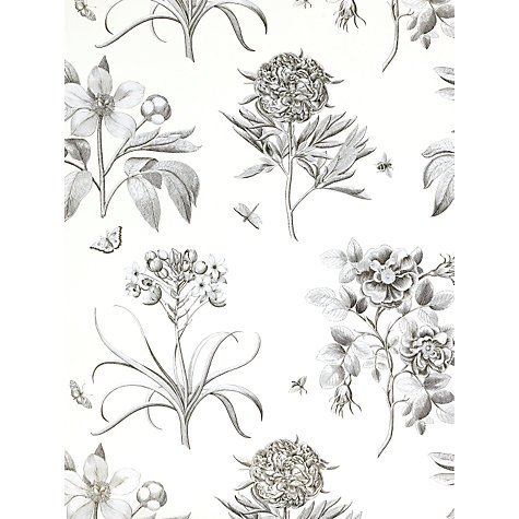 Buy Sanderson Wallpaper, Etchings and Roses DPFWER106, Black Online at johnlewis.com