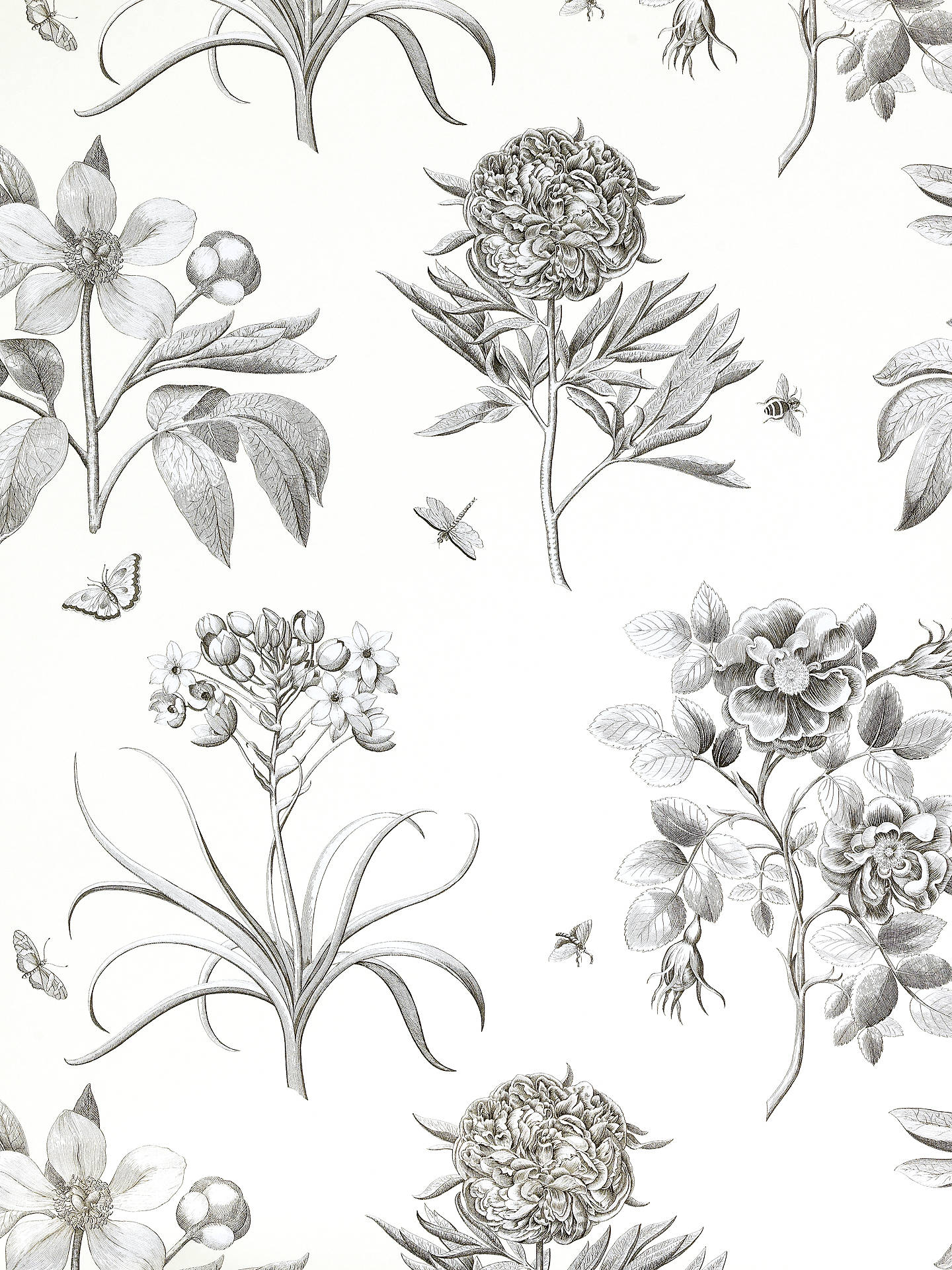 BuySanderson Wallpaper, Etchings and Roses DPFWER106, Black Online at johnlewis.com