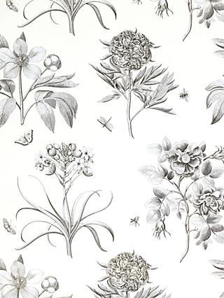 Sanderson Wallpaper, Etchings and Roses DPFWER106, Black