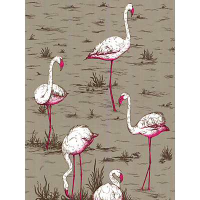 Image of Cole & Son Flamingos Wallpaper