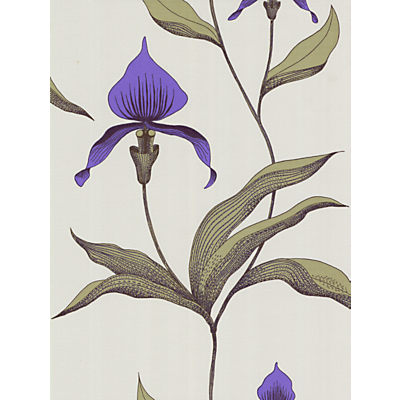 Image of Cole & Son Orchid Wallpaper, Violet, 66/4024