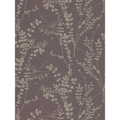 Image of Harlequin Salvia Wallpaper