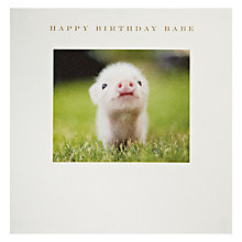 Buy Susan O'Hanlon Piglet Birthday Card Online at johnlewis.com