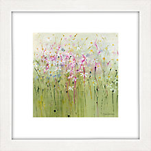 Buy Sue Fenlon - Daisy Meadow Framed Print, 37 x 37cm Online at johnlewis.com