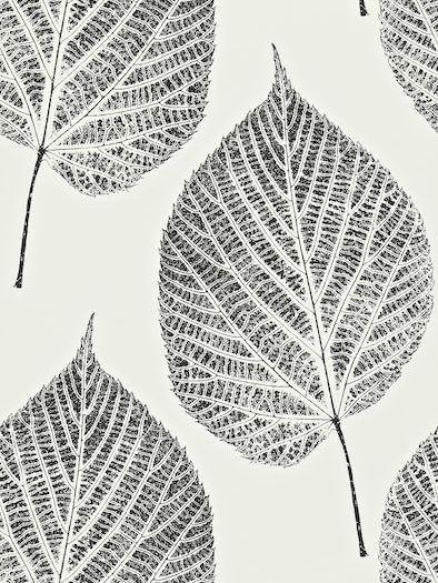 Harlequin Harlequin Leaf Wallpaper