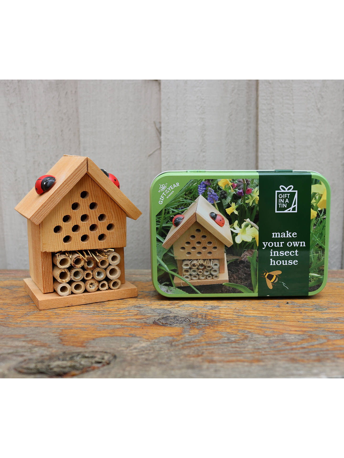 Buy Apples to Pears Gift In a Tin Make Your Own Insect House Craft Kit Online at johnlewis.com