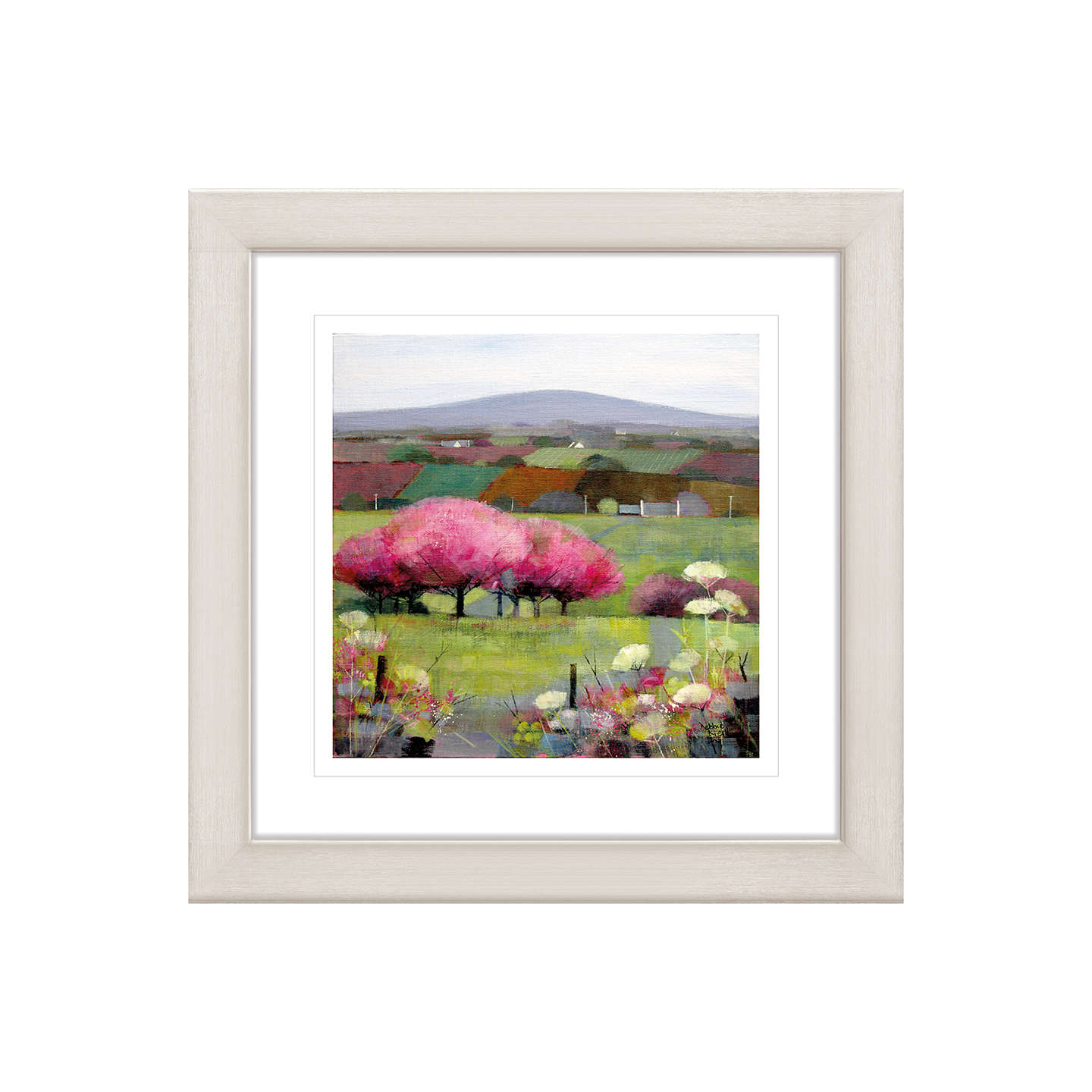 BuyDebbie Neill - Time for Cherry Blossom Framed Print, 57 x 57cm Online at johnlewis.com