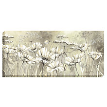 Buy Catherine Stephenson - Neutral White Poppies Print on Canvas, 60 x 135cm Online at johnlewis.com