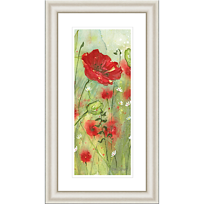 Catherine Stephenson – Red Poppy Dawn Framed Print, 90.5 x 50.5cm
