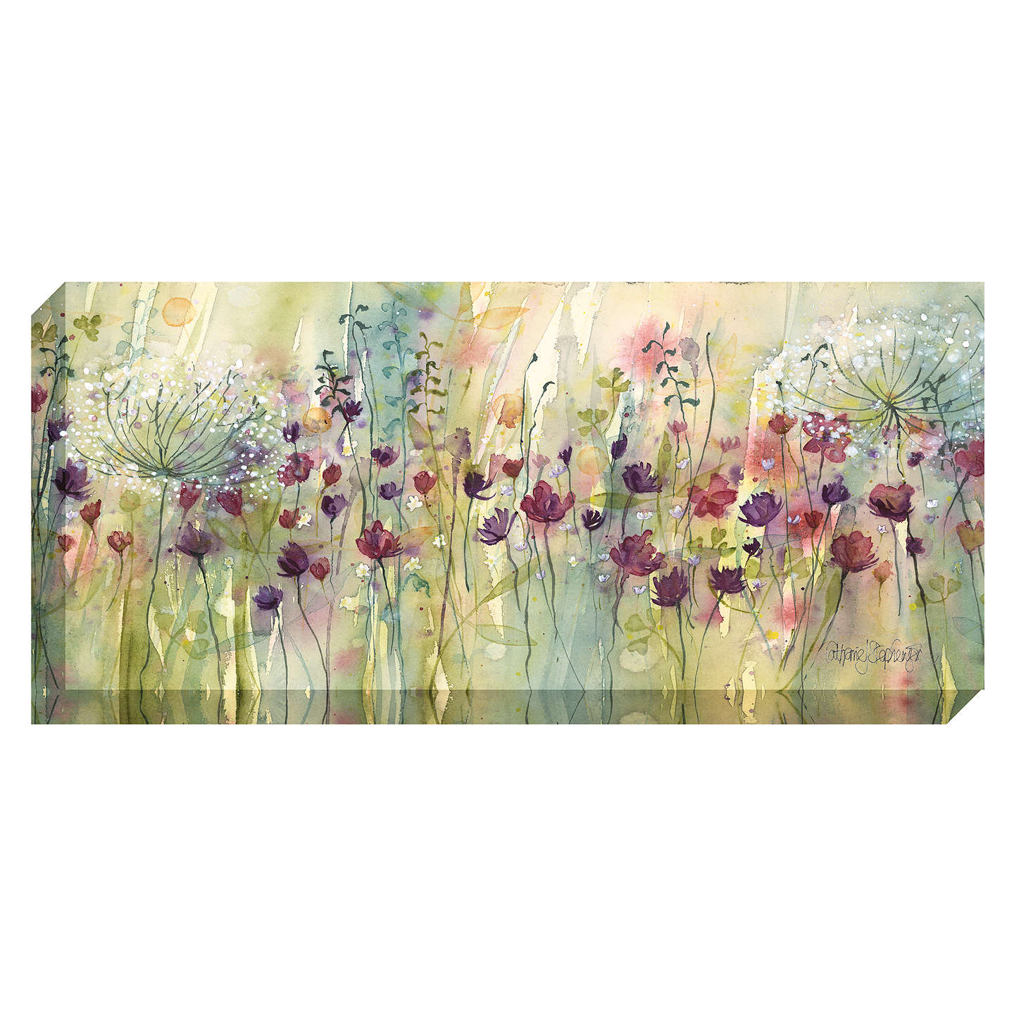 BuyCatherine Stephenson - Spring Floral Pods Print on Canvas, 60 x 135cm Online at johnlewis.com