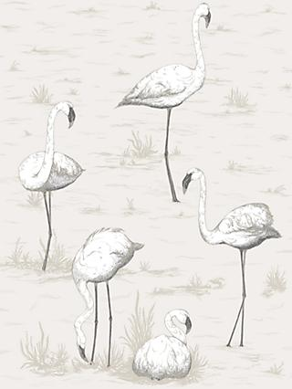 Cole & Son Flamingos Wallpaper