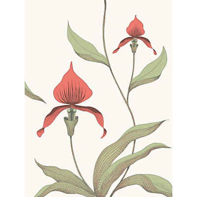 Image of Cole & Son Orchid Wallpaper