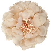 Buy John Lewis Open Full Flower Corsage, Beige Online at johnlewis.com