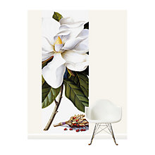 Buy Surface View Bull Bay Wall Mural, 100 x 265cm Online at johnlewis.com