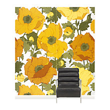 Buy Surface View Summer Poppies Wall Mural, 240 x 265cm Online at johnlewis.com
