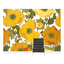 Buy Surface View Summer Poppies Wall Mural, 360 x 265cm Online at johnlewis.com