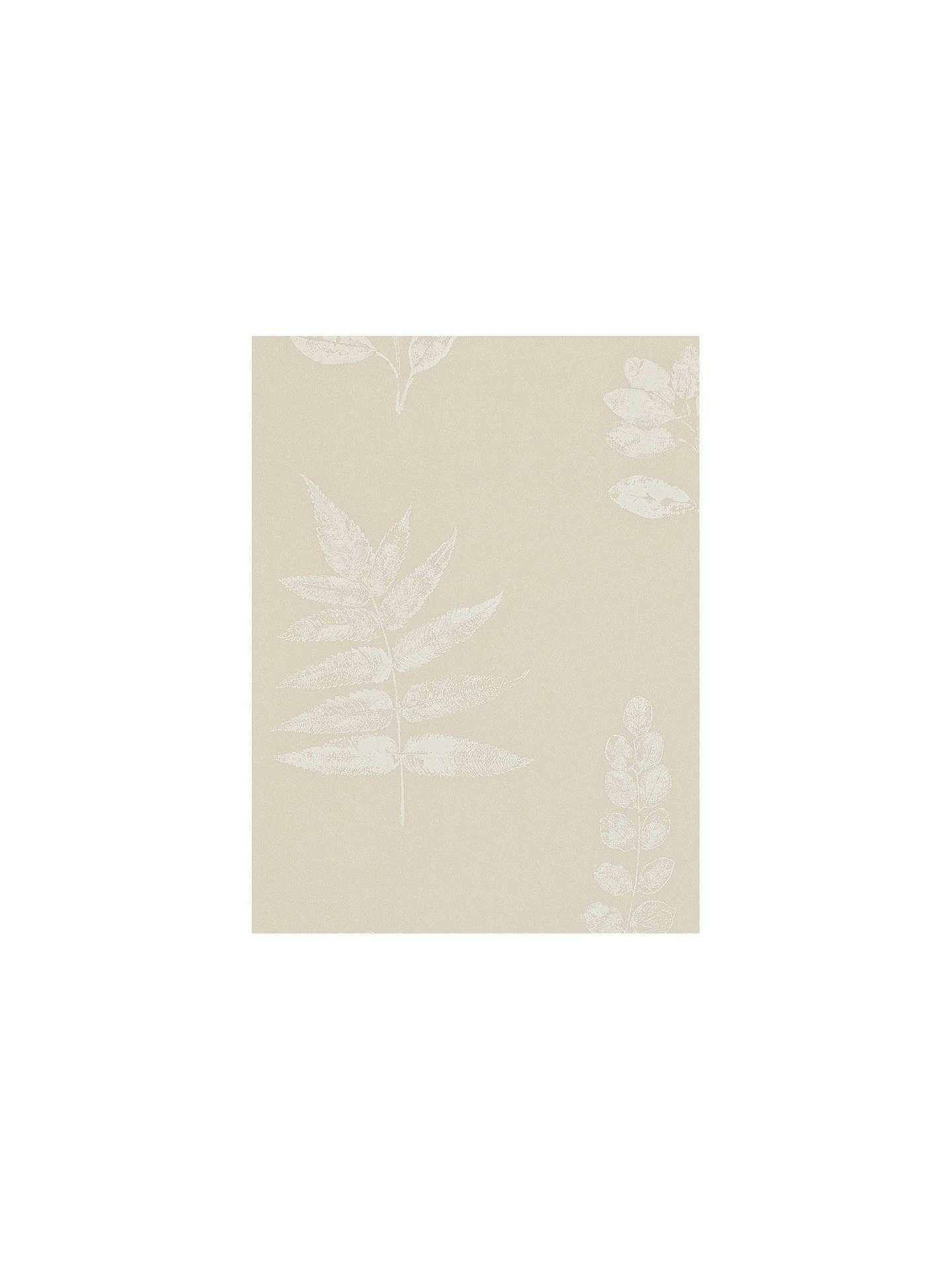 Buy Sanderson Laurel Paste the Wall Wallpaper, DMAD212852 Online at johnlewis.com ...
